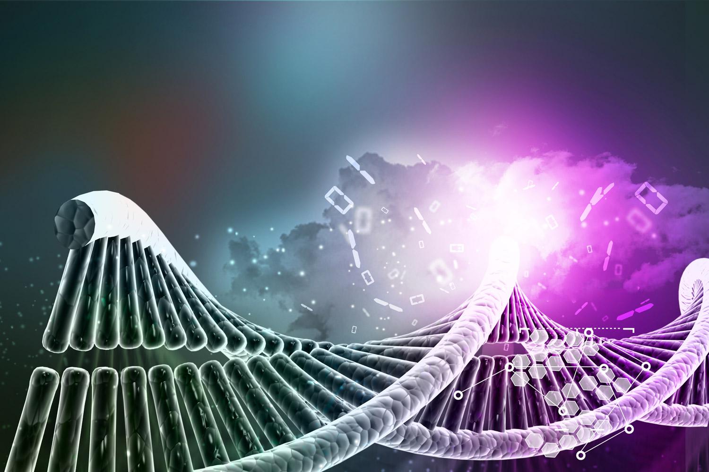 שוני גנטי בין האדם לשימפנזה