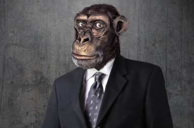 אבולוציה-אדם-מן-הקוף