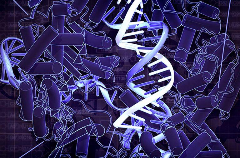 העברת גנים אופקית